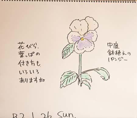 今日の中庭の植物_b0364195_09241994.jpg