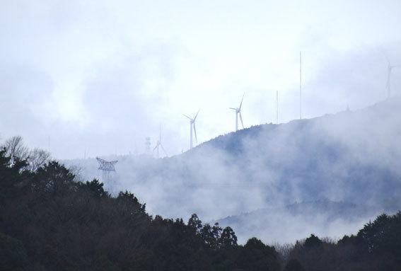 雨上がりは霧が楽しい_b0145296_15372772.jpg