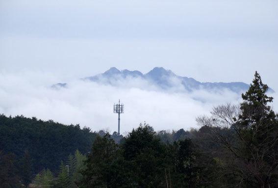 雨上がりは霧が楽しい_b0145296_15373352.jpg