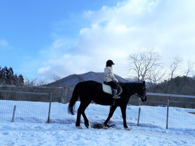 暖冬だけどやっぱり寒い!_e0186499_21400586.jpg