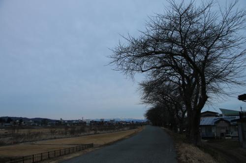 雪のない米沢の街を、工学部キャンパスより万里橋経由自宅へ_c0075701_17334328.jpg