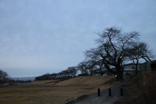 雪のない米沢の街を、工学部キャンパスより万里橋経由自宅へ_c0075701_17341867.jpg