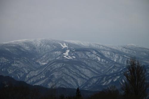雪のない米沢の街を、工学部キャンパスより万里橋経由自宅へ_c0075701_17361039.jpg