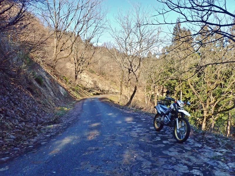 真冬だけどセローで林道へ登ってみました!_c0336902_20474542.jpg