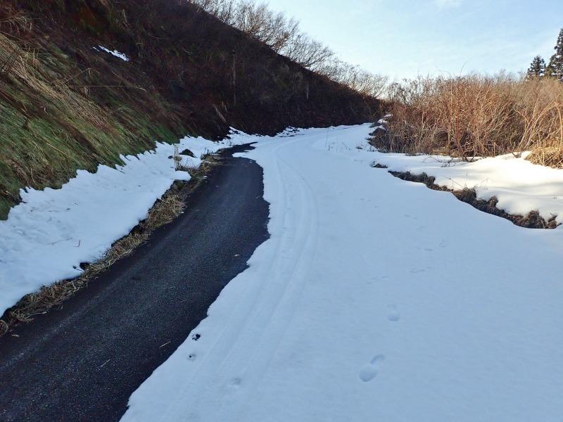 真冬だけどセローで林道へ登ってみました!_c0336902_20493639.jpg