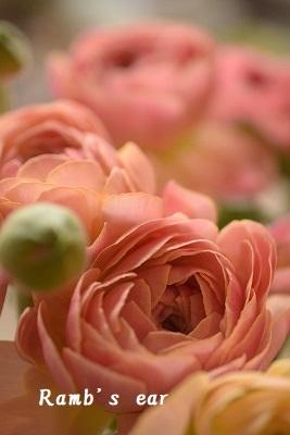 本日のお花♪_e0128909_09435922.jpg