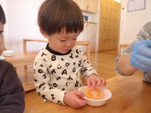 乳児食育:みかんの皮むき_e0319922_16032896.jpg