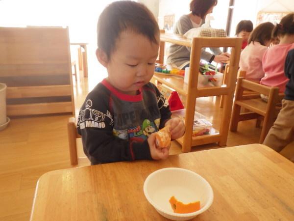 乳児食育:みかんの皮むき_e0319922_16220590.jpg