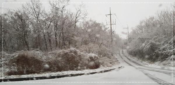 🎵 チェジュの冬 🎵_a0115924_19020639.jpg