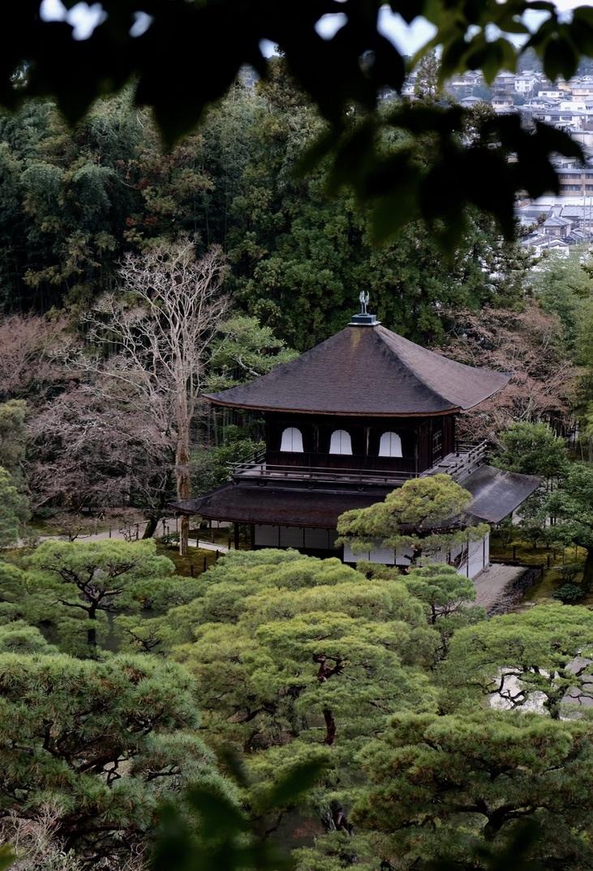 銀閣寺つづき_f0315034_13365173.jpeg