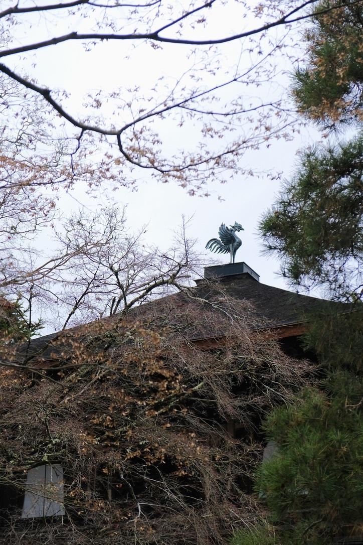 銀閣寺つづき_f0315034_13372553.jpeg