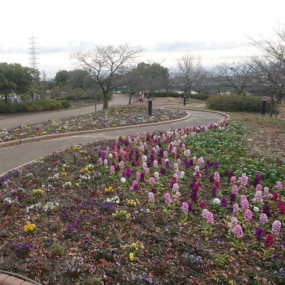 農業文化園・戸田川緑地へ行ってきました♪_f0373339_13411418.jpg