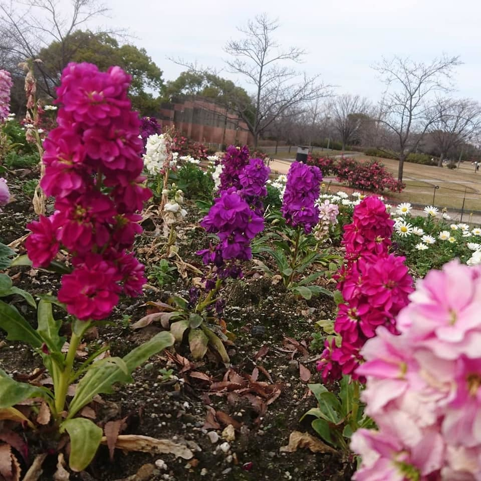 農業文化園・戸田川緑地へ行ってきました♪_f0373339_13411480.jpg