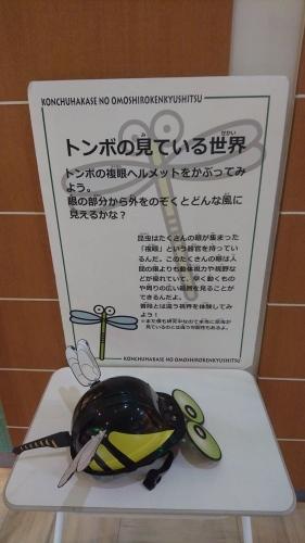 農業文化園・戸田川緑地へ行ってきました♪_f0373339_14000221.jpg