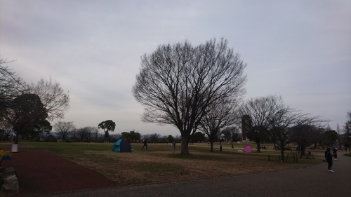 農業文化園・戸田川緑地へ行ってきました♪_f0373339_14040737.jpg