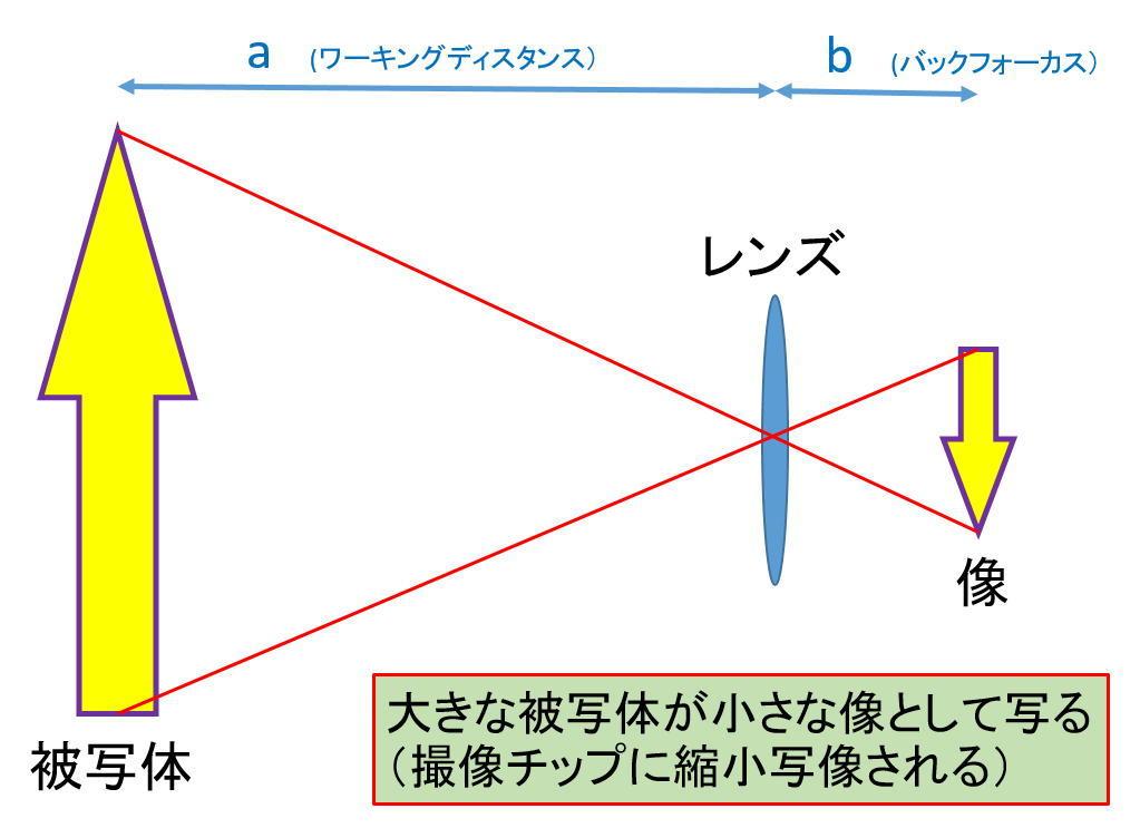 ASI294MCのベイヤー構造判明か?_f0346040_06115596.jpg