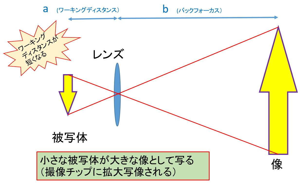 ASI294MCのベイヤー構造判明か?_f0346040_06150203.jpg