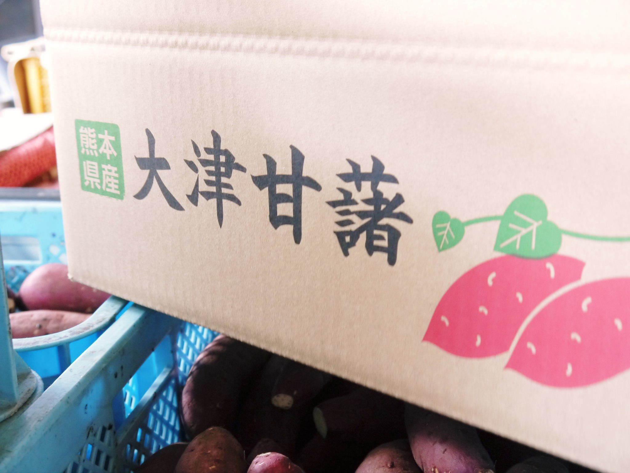 熊本産大津甘藷『からいも(サツマイモ)』の販売に向け、生産農家を現地取材(前編)_a0254656_17352044.jpg