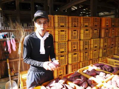 熊本産大津甘藷『からいも(サツマイモ)』の販売に向け、生産農家を現地取材(前編)_a0254656_17514425.jpg