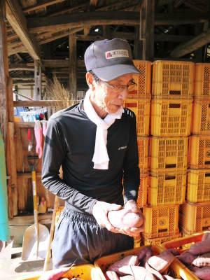 熊本産大津甘藷『からいも(サツマイモ)』の販売に向け、生産農家を現地取材(前編)_a0254656_17585491.jpg