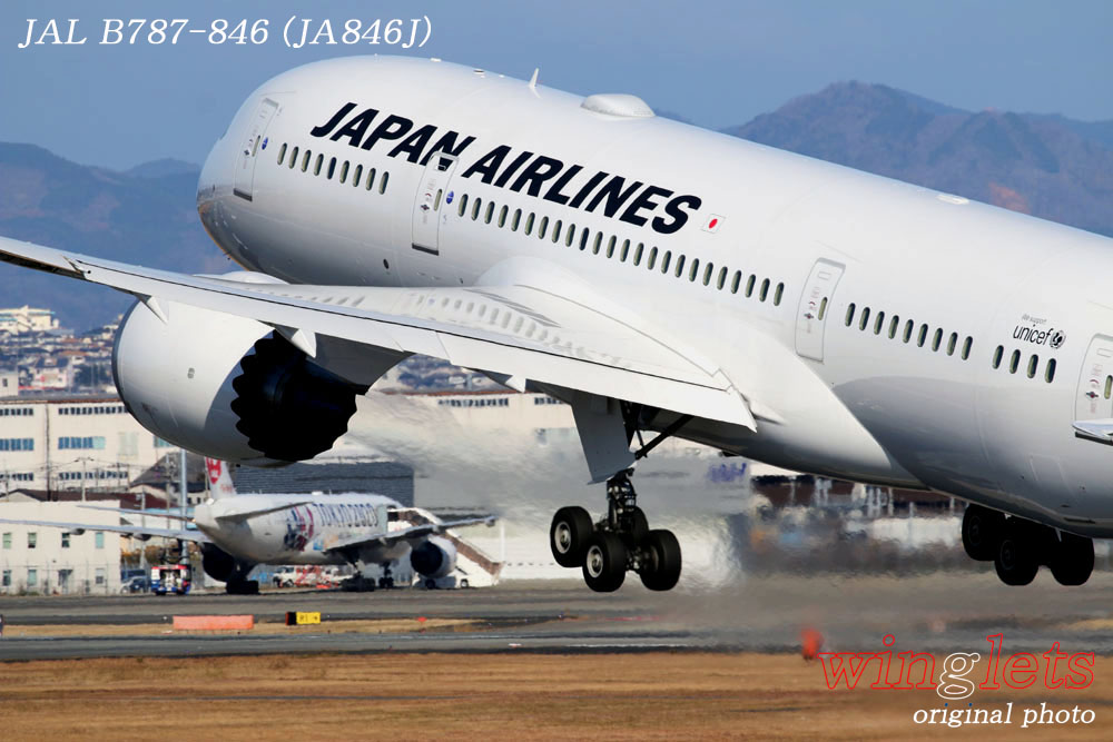 '20年 伊丹空港レポート・・・JAL/JA846J_f0352866_23374962.jpg