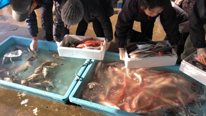 2020.1.25 沼ノ内魚市場朝市_a0255967_16293727.jpg