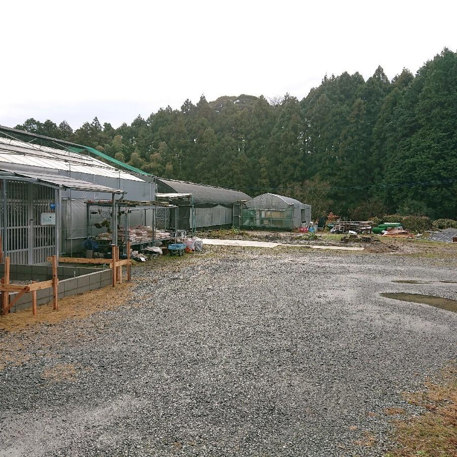 店舗、敷地内をリニューアル中_f0356792_11480843.jpg