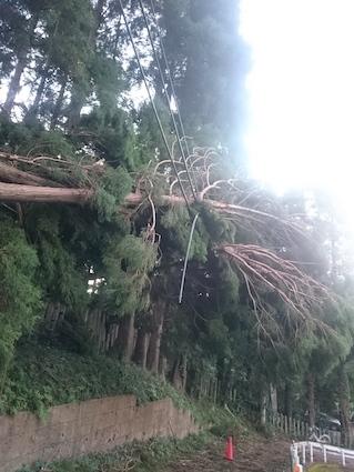 台風被害_e0246300_10035612.jpg