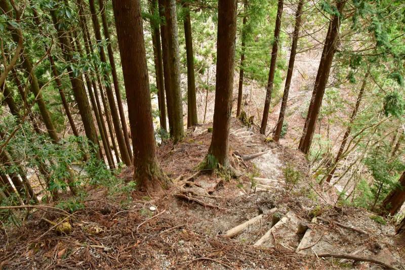 Nishi-Tan Roundwalk その7_b0223512_22390642.jpg