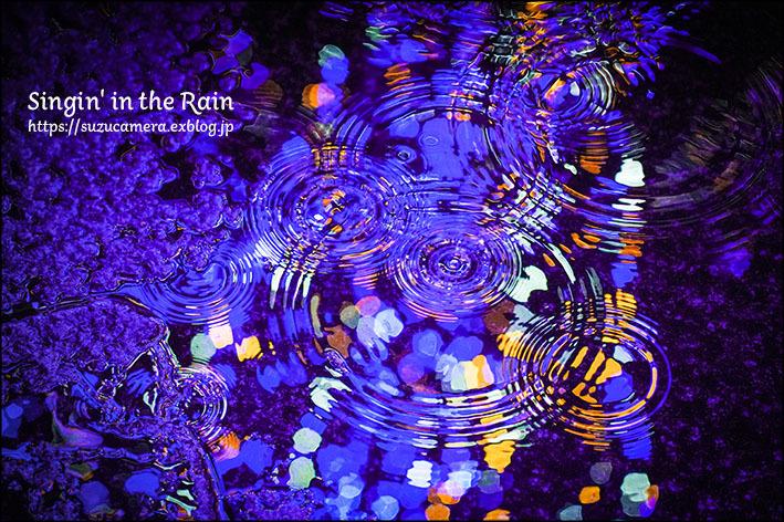 雨に唄えば_f0100215_23145766.jpg