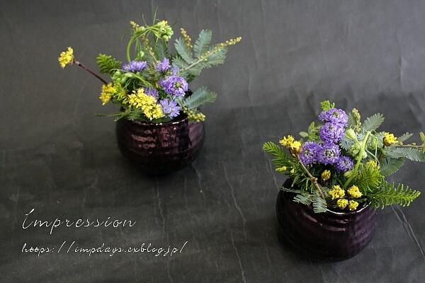 定期装花から 孔雀アスター:八重パープル_a0085317_16555795.jpg