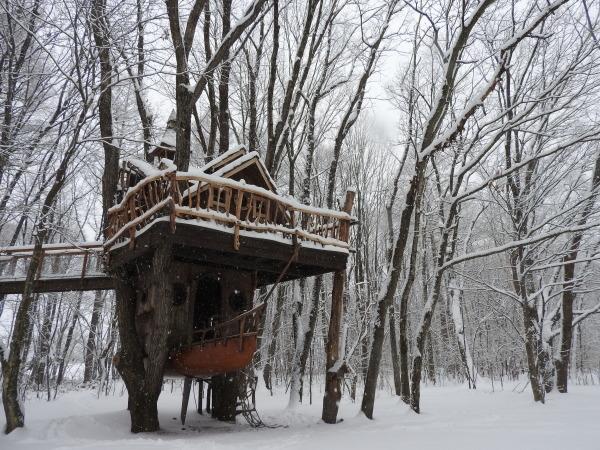 雪が降りました!天気予報、道路状況最新をチェックして(2020年1月28日)_b0174425_11132310.jpg