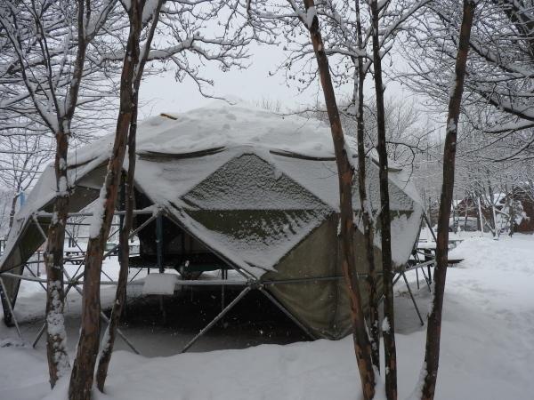 雪が降りました!天気予報、道路状況最新をチェックして(2020年1月28日)_b0174425_11134710.jpg