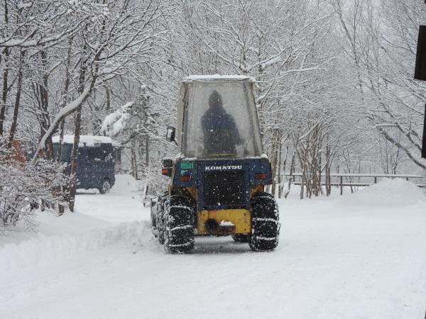 雪が降りました!天気予報、道路状況最新をチェックして(2020年1月28日)_b0174425_11140023.jpg