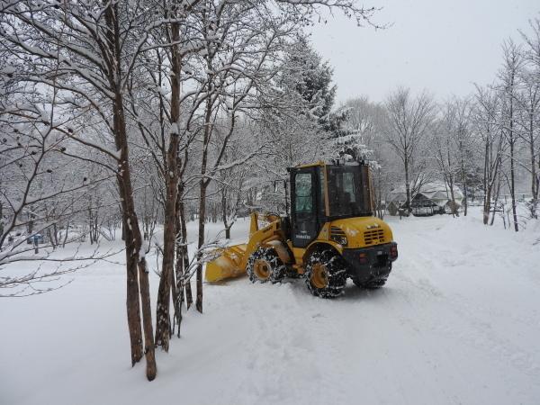 雪が降りました!天気予報、道路状況最新をチェックして(2020年1月28日)_b0174425_11140590.jpg