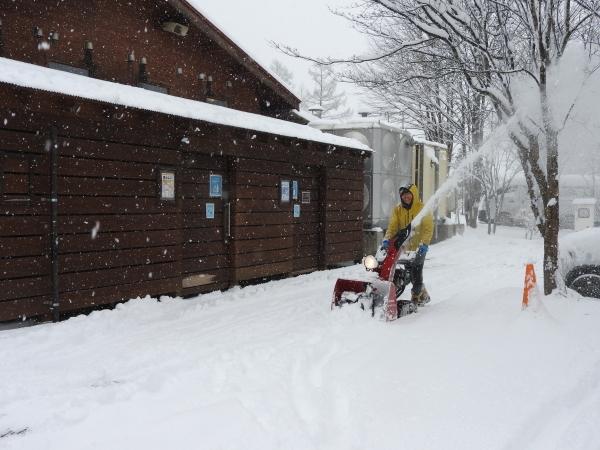 雪が降りました!天気予報、道路状況最新をチェックして(2020年1月28日)_b0174425_11141092.jpg