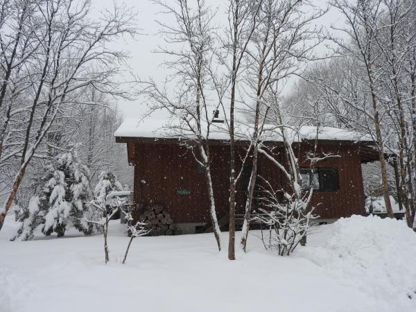 雪が降りました!天気予報、道路状況最新をチェックして(2020年1月28日)_b0174425_11144052.jpg