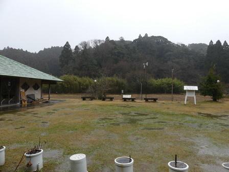 雨の日のカラス_a0123836_16343297.jpg