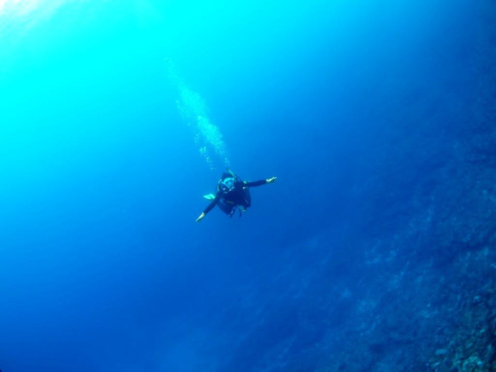 Run & Dive !!_a0189838_11045494.jpg