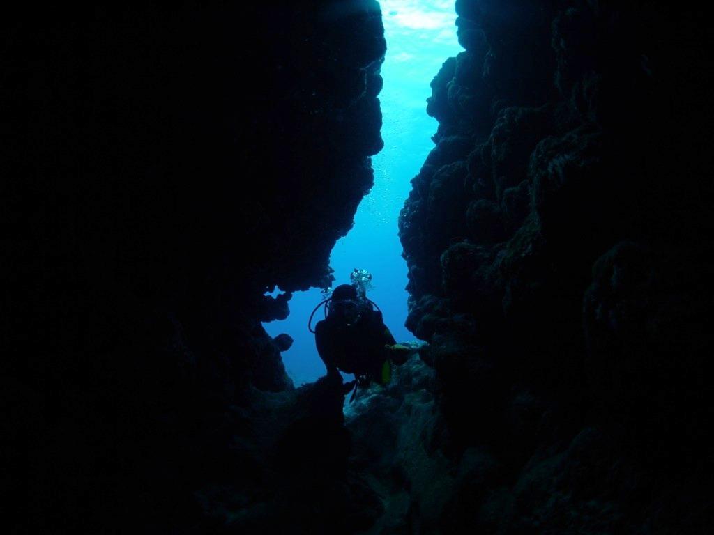 Run & Dive !!_a0189838_11052828.jpg