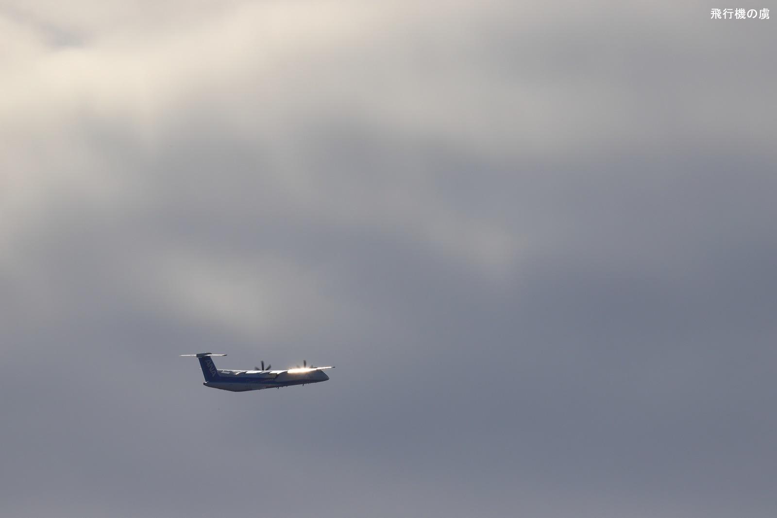 翼がキラリ  DHC-8  ANAウイングス (EH)_b0313338_01403225.jpg