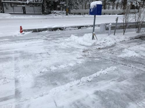 久々の降雪。_d0186154_08301037.jpg