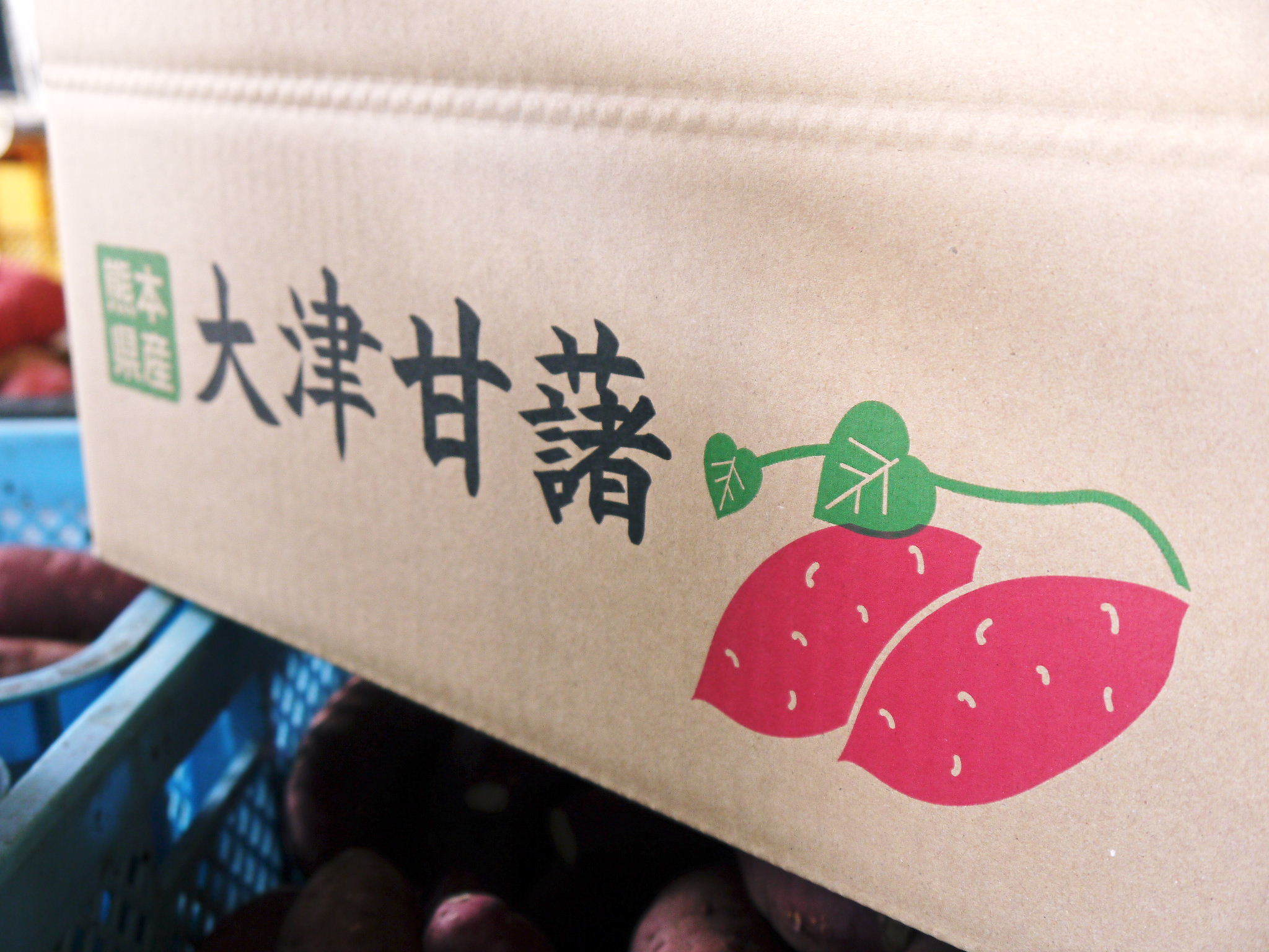 熊本産大津甘藷『からいも(サツマイモ)』の販売に向け、生産農家を現地取材(後編)_a0254656_17182982.jpg