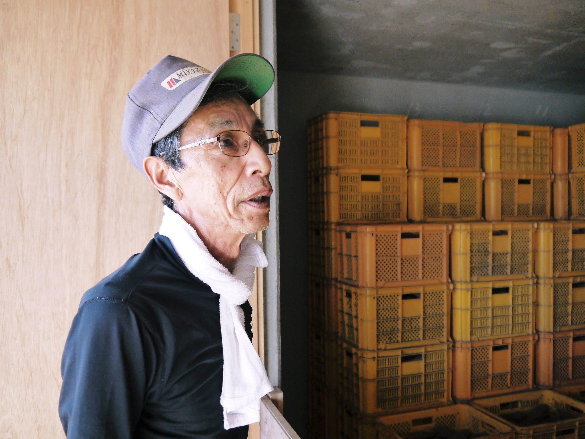 熊本産大津甘藷『からいも(サツマイモ)』の販売に向け、生産農家を現地取材(後編)_a0254656_18350164.jpg