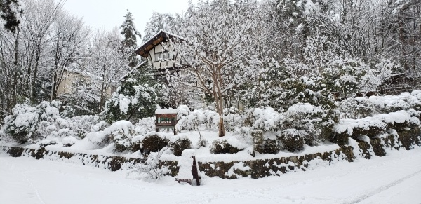 按針~~山荘~~冬景色~~~_b0222066_10361372.jpg