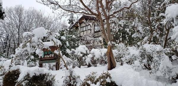 按針~~山荘~~冬景色~~~_b0222066_10365181.jpg