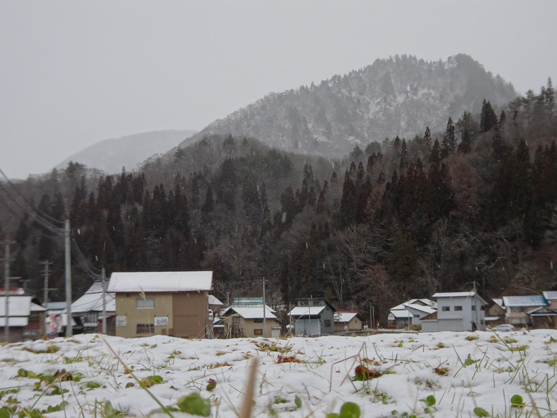 今朝の雪_d0122374_08522784.jpg