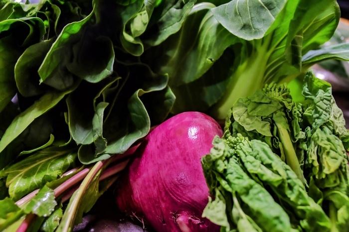 野菜の元気_e0108604_09401955.jpeg