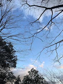 夕方の散歩_e0103024_18482695.jpg