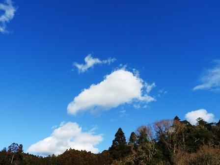 天気がいいっていいですね_a0123836_15255893.jpg